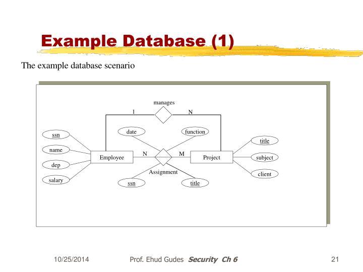 Example Database (1)