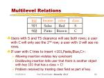 multilevel relations