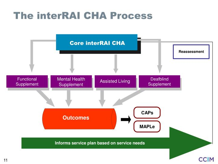 The interRAI CHA Process