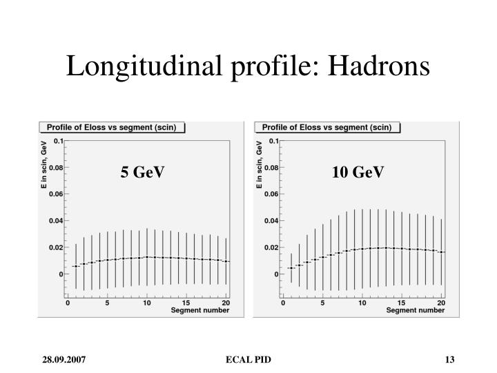 Longitudinal profile: Hadrons