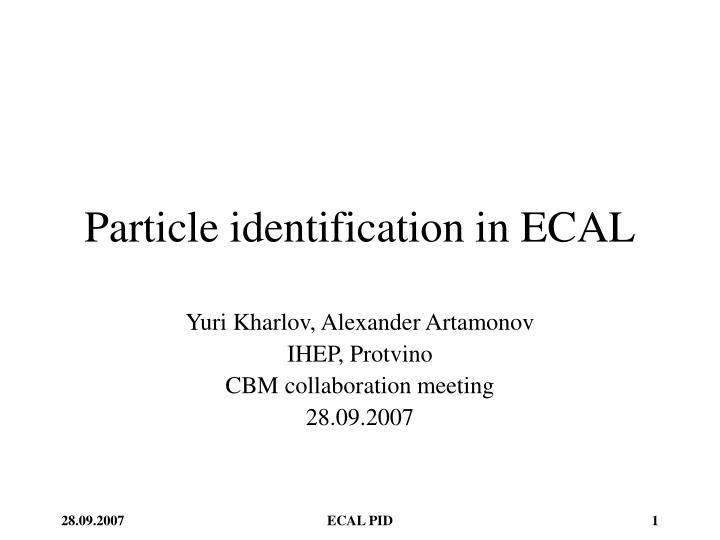 Particle identification in ecal