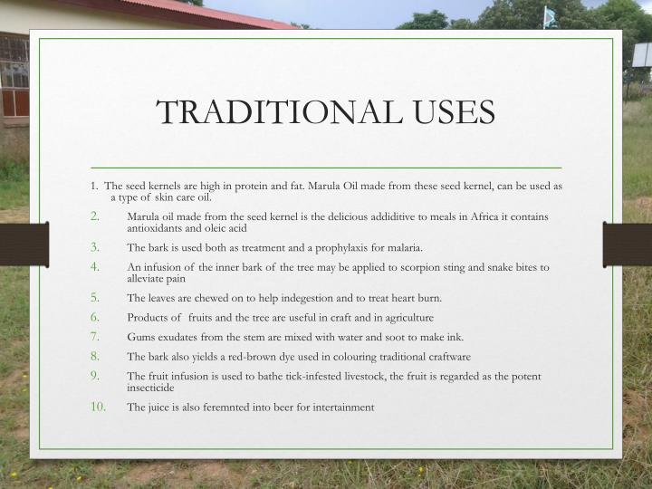 TRADITIONAL USES