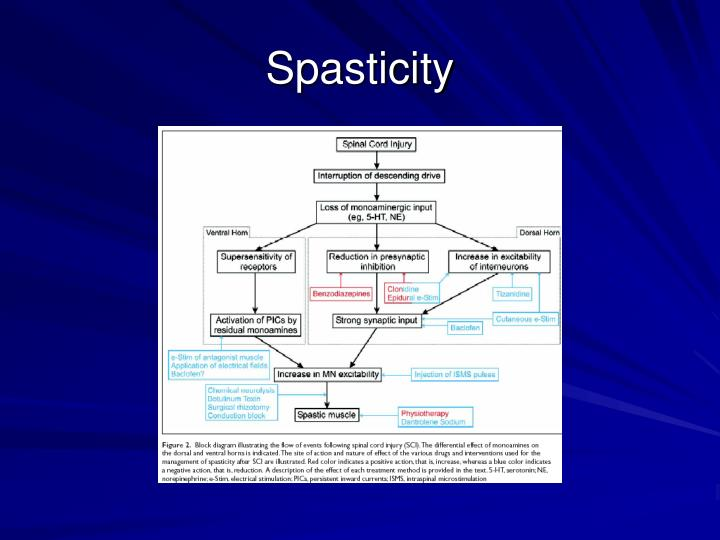 Spasticity