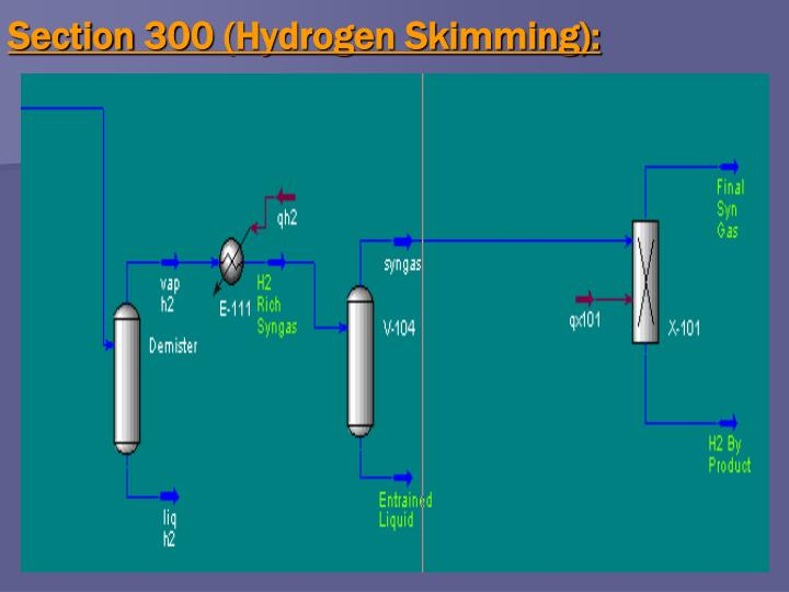 Section 300 (Hydrogen Skimming):