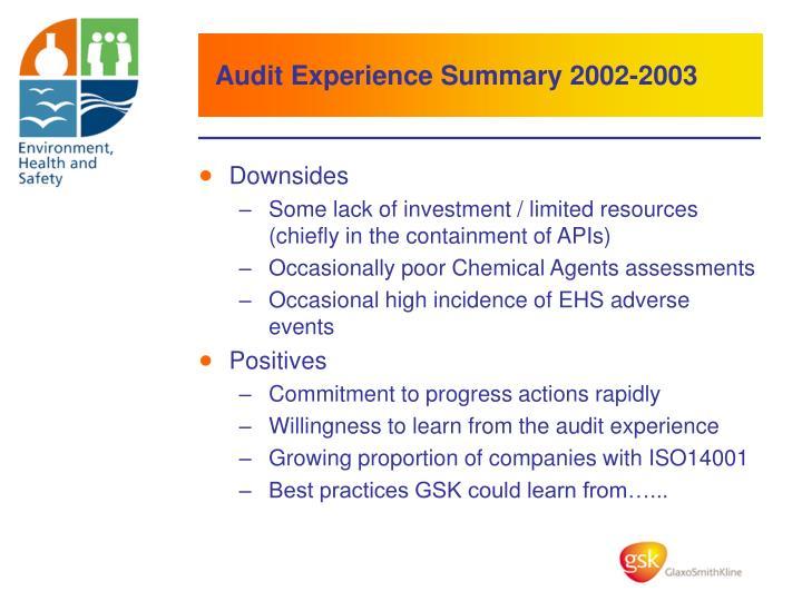 Audit Experience Summary 2002-2003