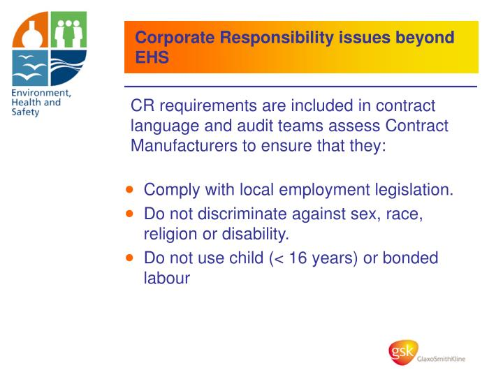 Corporate Responsibility issues beyond EHS