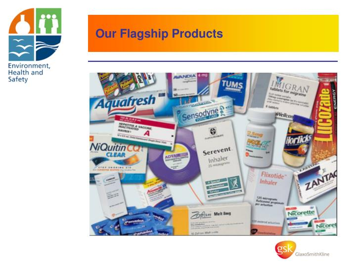 Our Flagship Products