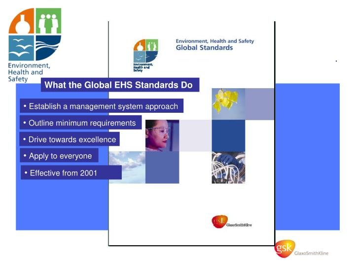 What the Global EHS Standards Do