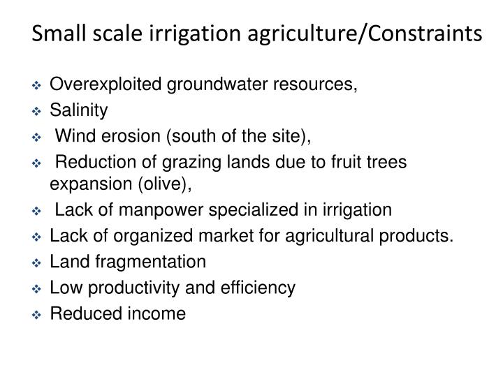 Small scale irrigation