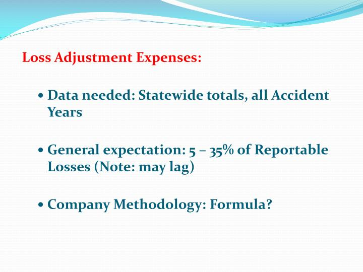 Loss Adjustment Expenses:
