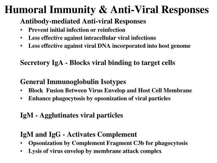 Humoral Immunity & Anti-Viral Responses