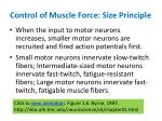 control of muscle force size principle