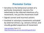 premotor cortex1