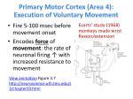 primary motor cortex area 4 execution of voluntary movement