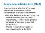 supplemental motor area sma