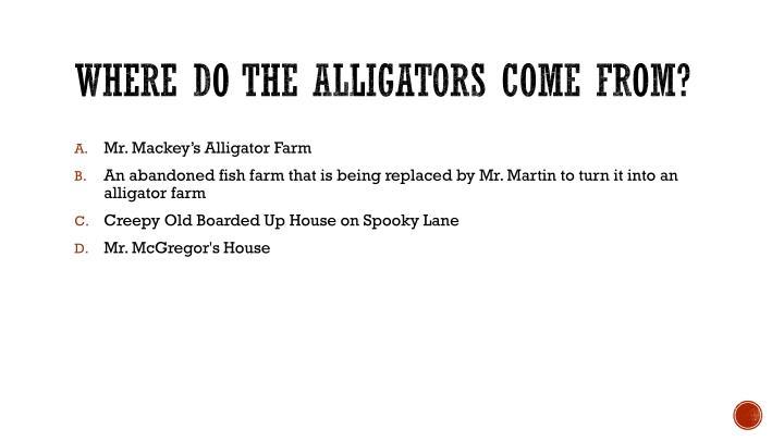 Where do the alligators come from?