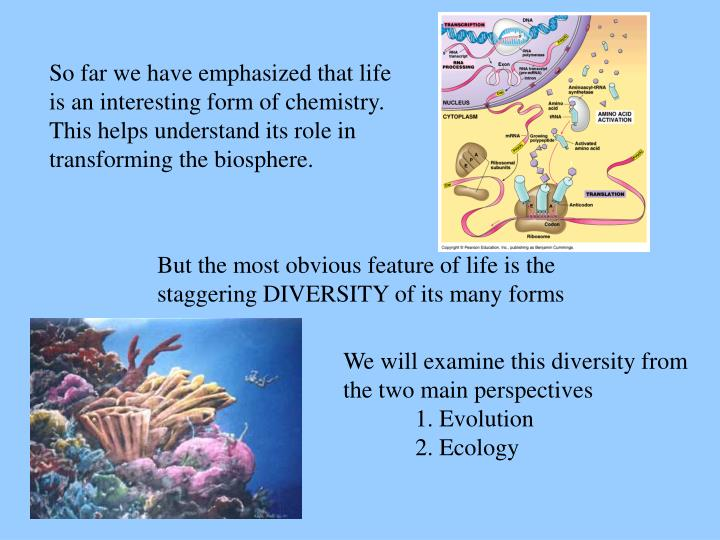 So far we have emphasized that life is an interesting form of chemistry.  This helps understand its role in transforming the biosphere.