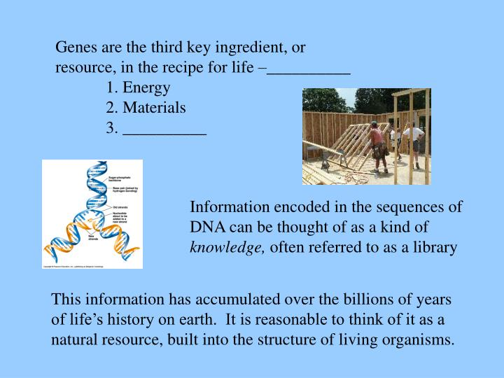 Genes are the third key ingredient, or resource, in the recipe for life –__________