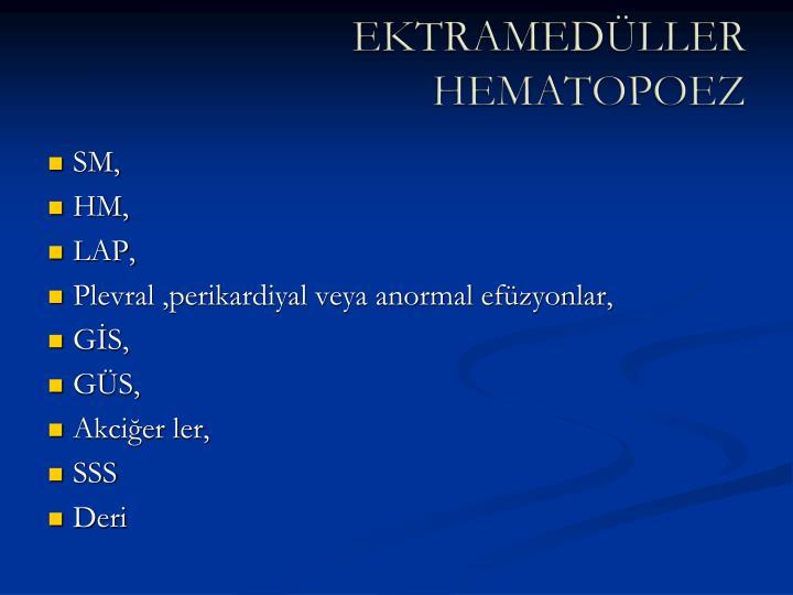 EKTRAMEDÜLLER HEMATOPOEZ