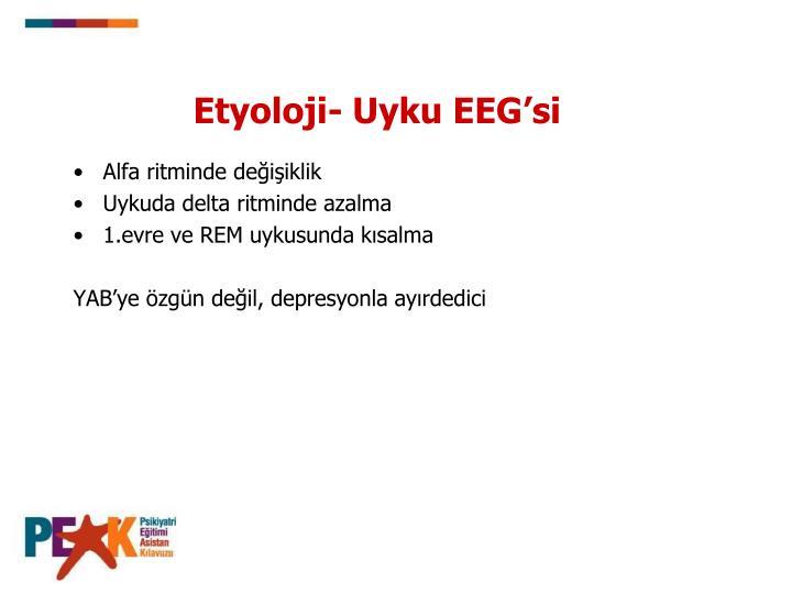 Etyoloji- Uyku EEG'si