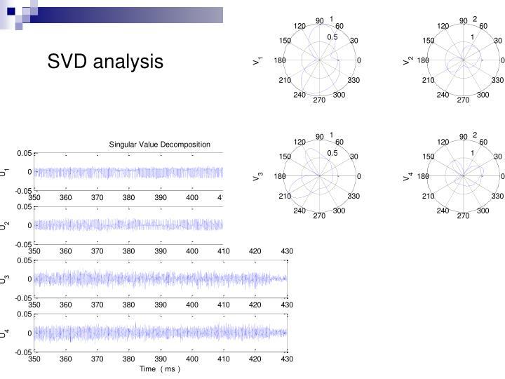 SVD analysis