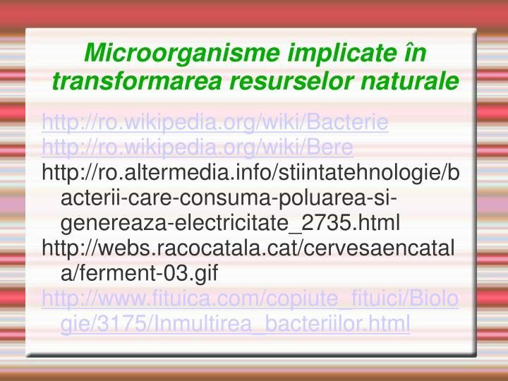 Microorganisme implicate