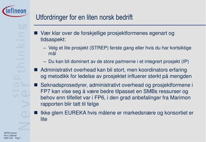 Utfordringer for en liten norsk bedrift