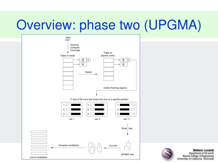 Overview: phase two (UPGMA)