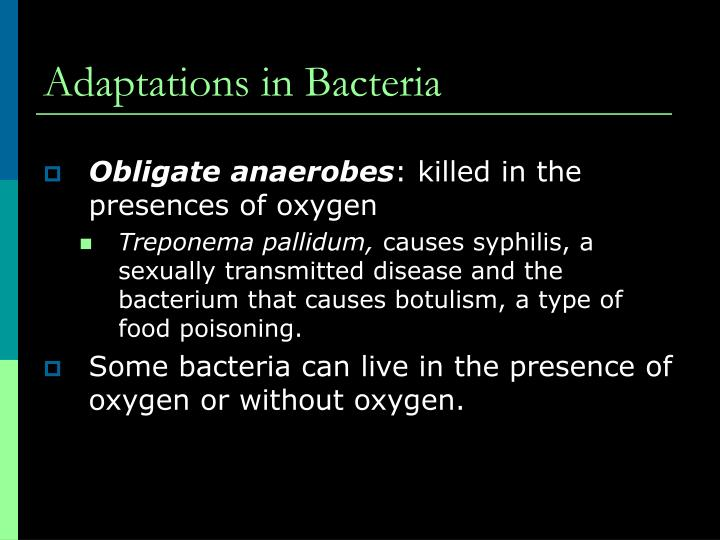 Adaptations in Bacteria