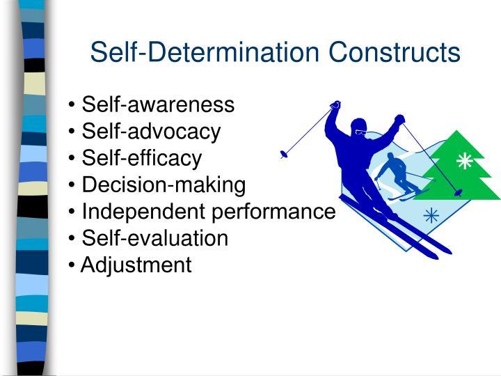 Self-Determination Constructs