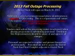 2013 fall outage processing3