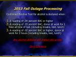 2013 fall outage processing7