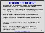 fehb in retirement1