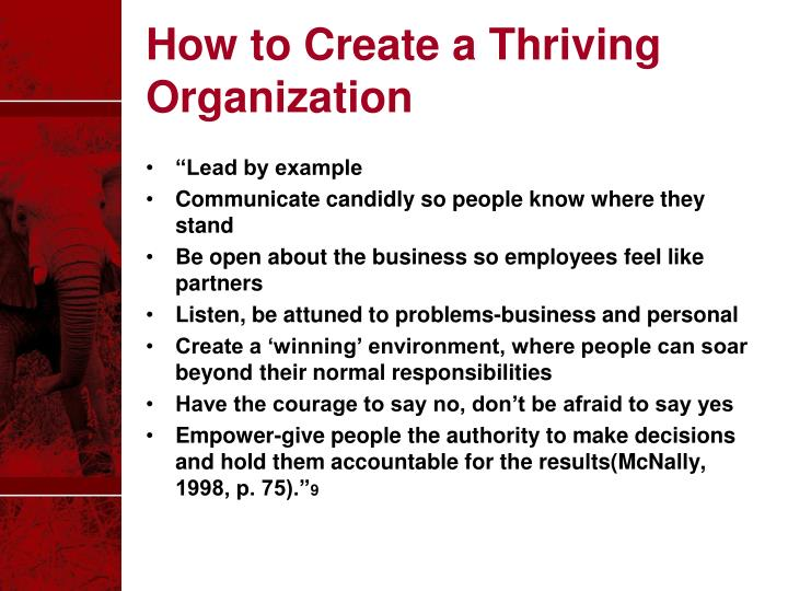How to Create a Thriving Organization