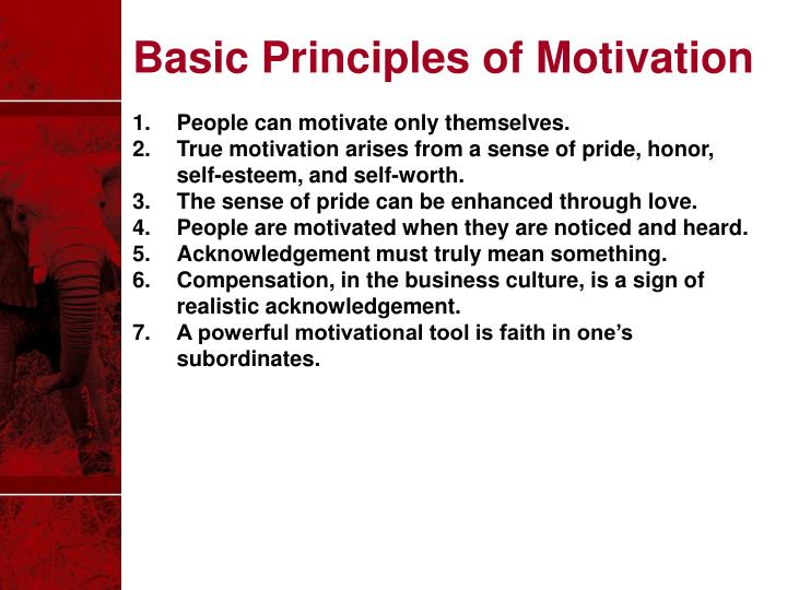 Basic Principles of Motivation