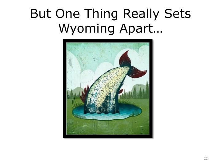 But One Thing Really Sets Wyoming Apart…