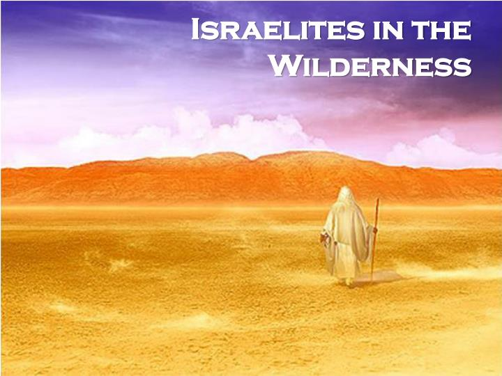 Israelites in the Wilderness