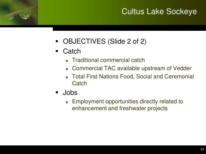 Cultus Lake Sockeye