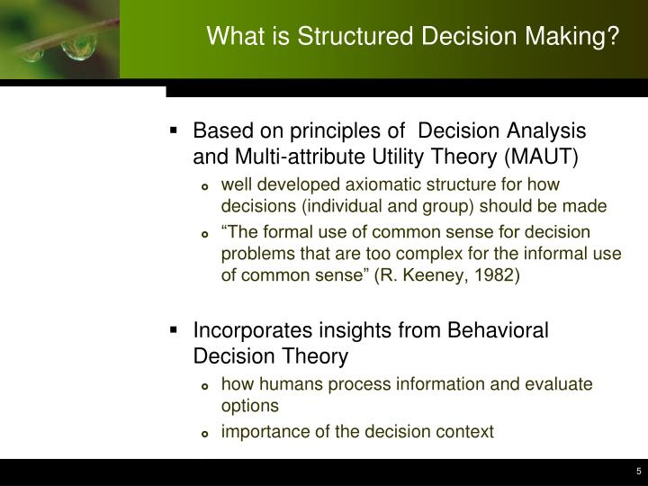 What is Structured Decision Making?