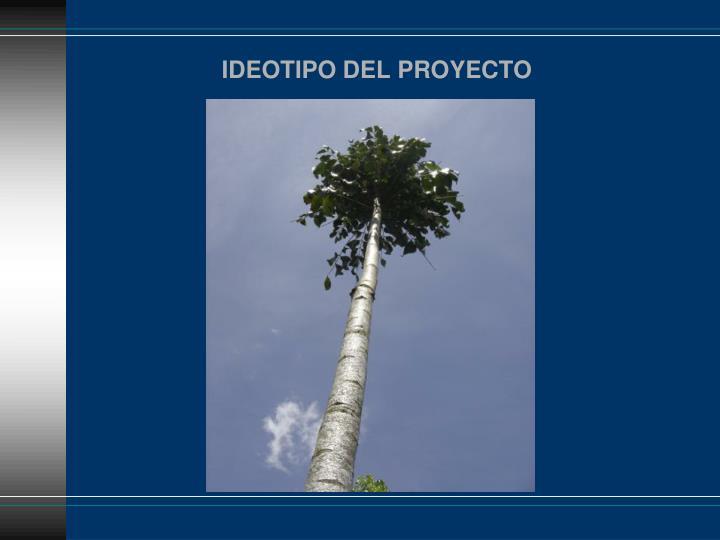 IDEOTIPO DEL PROYECTO