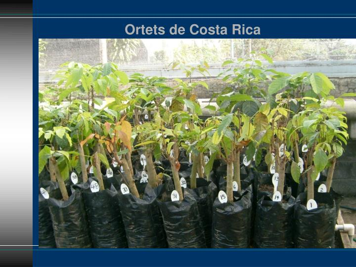 Ortets de Costa Rica