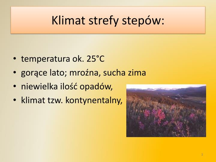 Klimat strefy stepów: