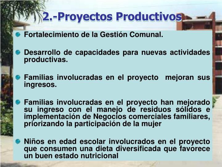 2.-Proyectos Productivos