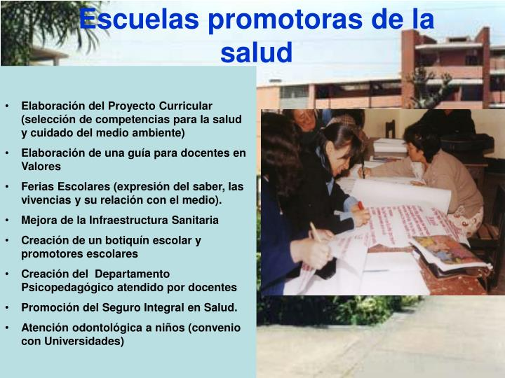 Escuelas promotoras de la salud