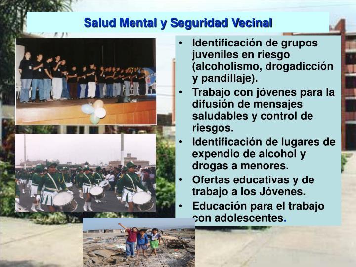 Salud Mental y Seguridad Vecinal
