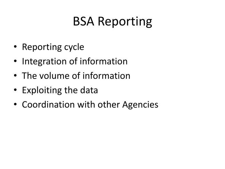 BSA Reporting