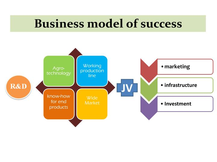 Business model of success