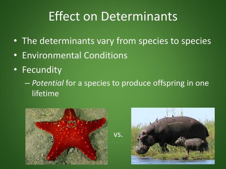 Effect on Determinants