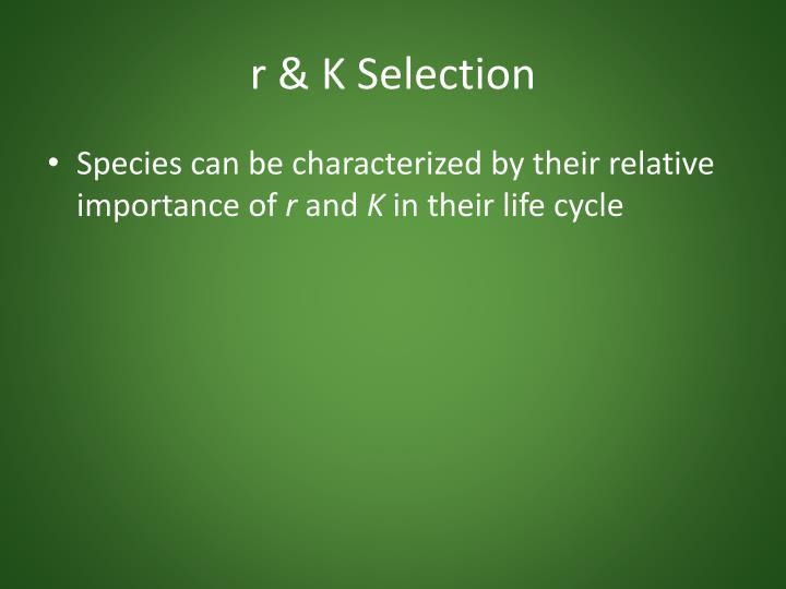 r & K Selection