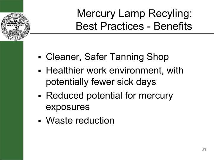 Mercury Lamp Recyling: